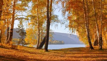 Jesienna Wędrówka